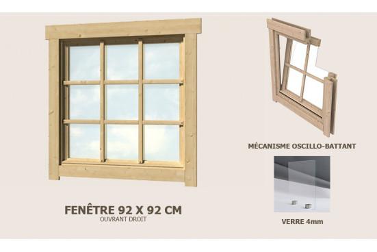 Fenêtre simple 920 x 920 abri 28mm